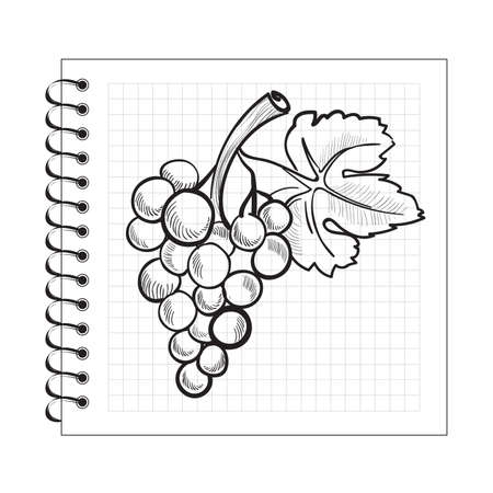 spiral notebook: Doodle grapes on spiral notebook paper isolated on white background