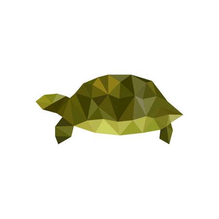 tortuga: Ilustración de la tortuga de origami verde aislado en el fondo blanco
