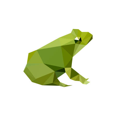 Illustration of modern flat design with origami frog, isolated on white background