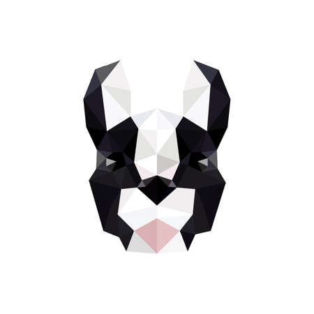 Modern flat design with origami french bulldog isolated on white background