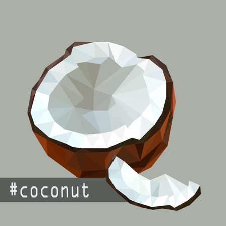 sweet segments: Illustration with flat origami design of coconut fruit Illustration