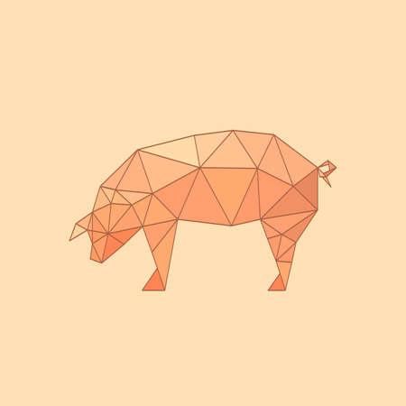 polychrome: Illustration of flat origami pig isolated on polychrome background Illustration