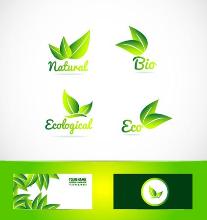 Symbol Element Vorlage bio eco Produkt Bio-Blatt ökologische vegan natürliche