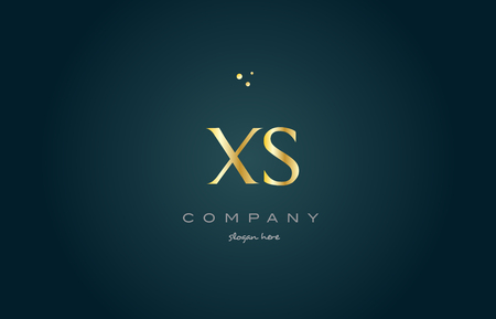 xs x s gold golden luxury product metal metallic alphabet company letter logo design vector icon template green background