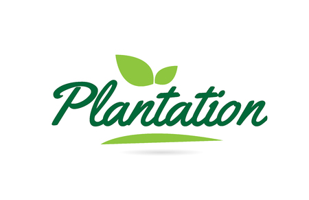 Plantation hand written word text for typography design in green color with leaf  Can be used for a logo or icon