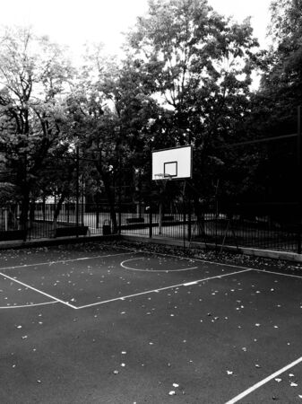 Black and white photography of an empty court with basketball hoop trees and fence Banco de Imagens