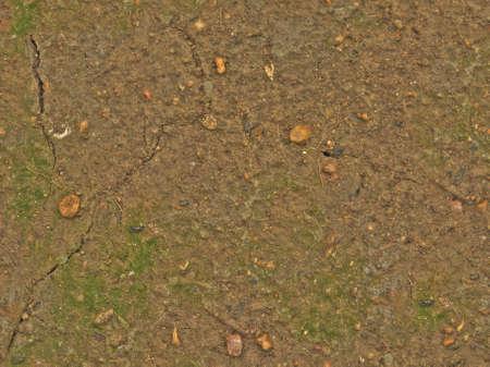濡れた地面のシームレスなテクス...