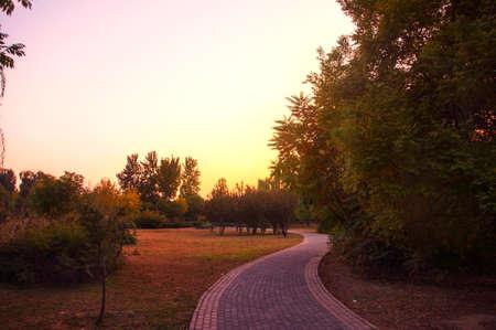 tortuous: Evening tortuous path