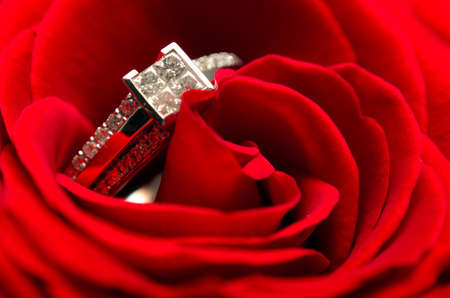 Macro view of a diamond engagement ring in a red rose