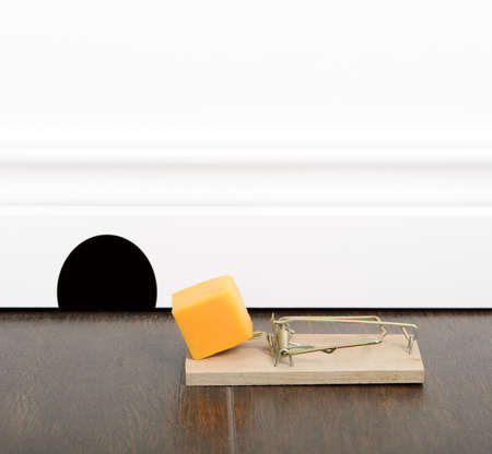 Mousetrap set with cheddar cheese on a floor, next to a mouse hole