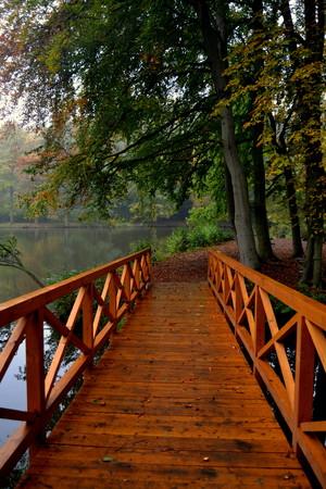 footbridges: wooden bridge