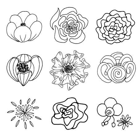 Flower outline transparent Illustration
