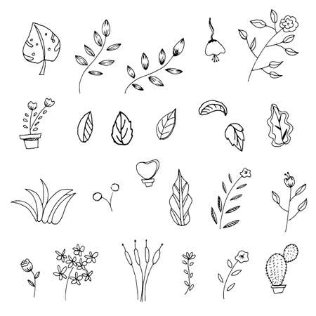Flower and leaves outline transparent vector eps10
