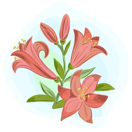 Vector illustration of  beautiful gift card with orange lilies