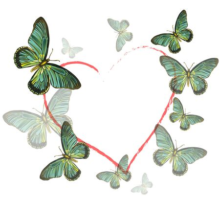 Vector illustration heart of butterflies on white background