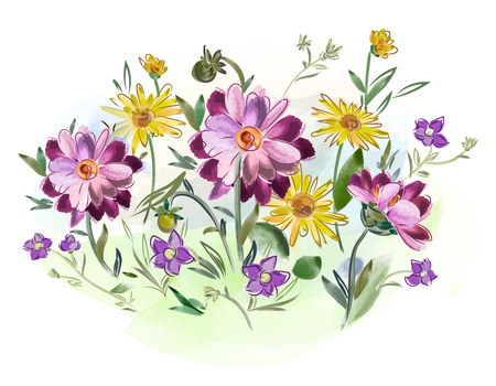 Vector illustration of watercolor flowers violets and pansy and leaves on meadow