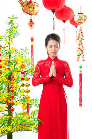 apricot tree: Young Vietnamese praying at apricot tree on traditional celebration
