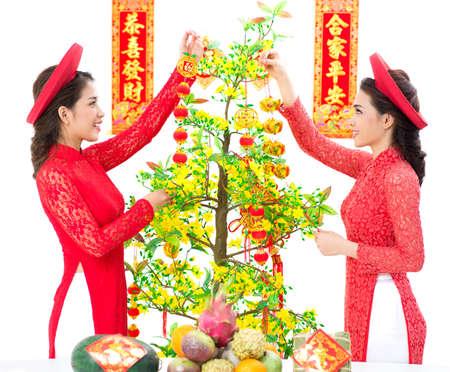 vietnamese ethnicity: Vietnamese girl decorating Vietnamese New Year Tree – Hoa Mai against a white background