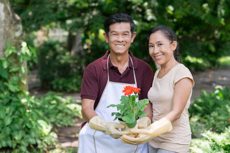 landlady: Portrait of a retired couple holding a flowerpot and looking at camera Stock Photo