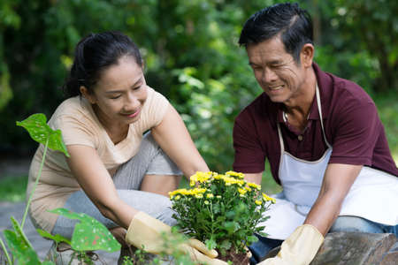 Image of a mature couple planting flowers carefully in the garden
