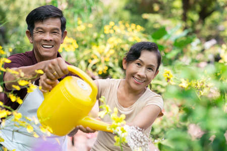 Portrait of cheerful seniors watering in the garden together