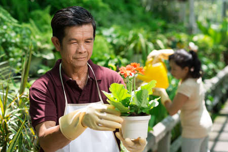 focus on foreground: Image of a mature man holding a plant in hands on the foreground