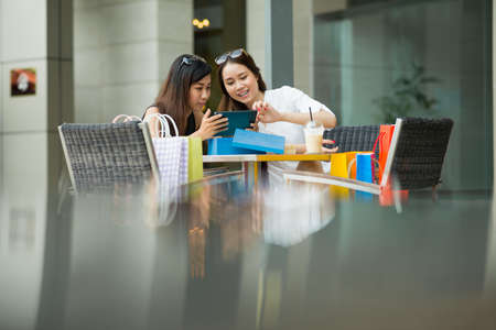 Copy-spaced image of lovely ladies doing on-line shopping at a cafe
