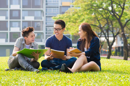 Group of students sharing with the ideas on the campus lawn Reklamní fotografie - 66665984