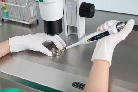 pcr: Close-up of human hands holding pcr and making an experiment