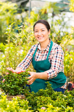 Happy Asian woman taking care of green plants in the garden Stock Photo