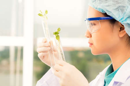 Young laboratory assistant examining sprouts in the test tubes, side view