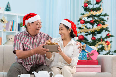 Happy senior couple swapping Christmas presents