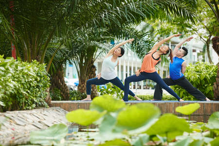 Group of adults attending public yoga class in the park Banco de Imagens