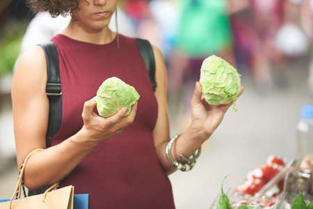 Cropped image of female customer choosing between two head of cabbage
