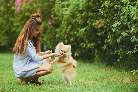 Cheerful Vietnamese young woman playing with her puppy in the park