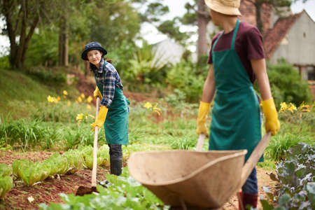 Full length portrait of attractive young gardener wearing gumboots and apron distracted from hoeing soil while talking to her male colleague driving wheelbarrow