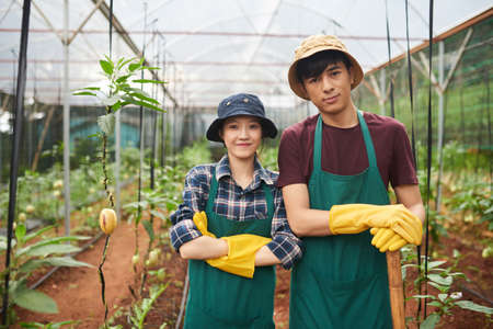 Cheerful young farm workers