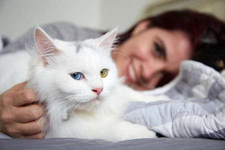 Purring white fluffy cat enjoying being stroked