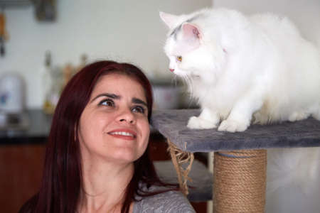 Happy woman looking at her pet sitting on cat tree Imagens