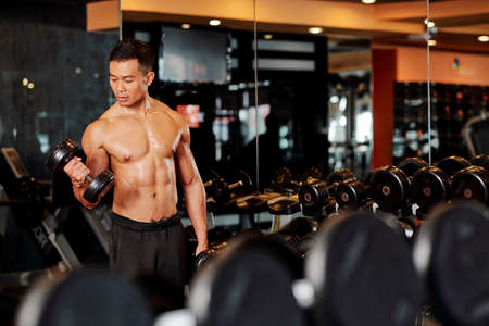 Handsome strong Vietnamese sportsman doing hammer curls with heavy dumbbells