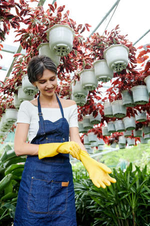 Smiling woman in denim apron putting on rubber gloves and preparing to work with plants and flowers in garden Imagens