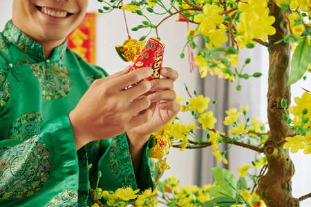 Smiling young Asian man hanging small fire crakers on blooming apricot tree when preparing for Chinese New Year