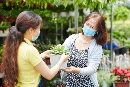 Mature woman in medical mask buying plant in gardening center Foto de archivo