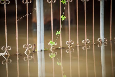 old gray steel door Stock Photo - 22918830