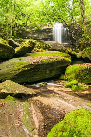 kradueng: Phu Kradueng national park ,Thailand