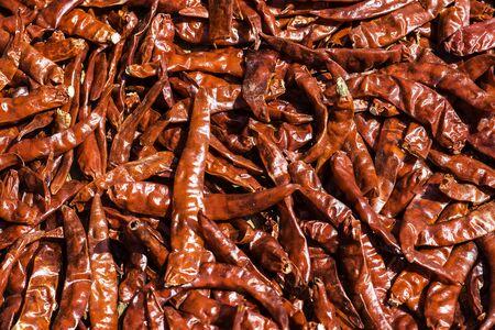 red chilli dry thai plants