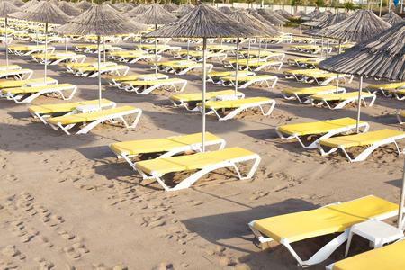 해변에 리드 우산과 노란 sunbeds