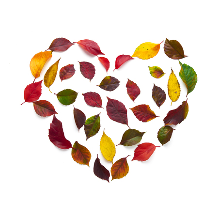 Heart symbol made of dried flowers and autumn leaves
