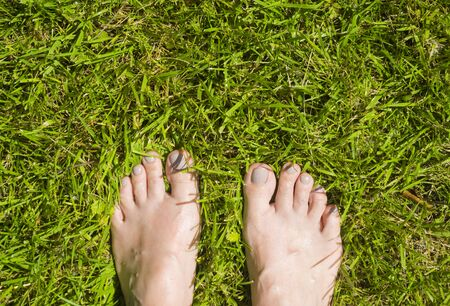 Bare womans feet on the green grass