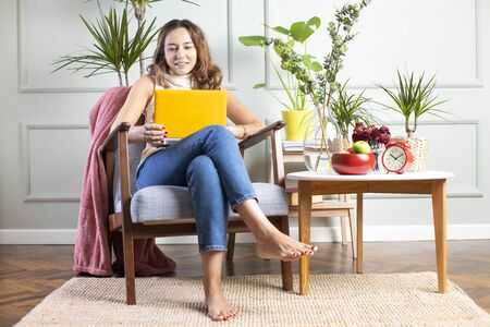 Freelancer young woman using laptop pc sitting in armchair in living room. Banco de Imagens